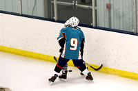 Solar Bears 04 vs. Sanford Power - March 28, 2015
