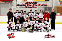 February 21, 2016 - Huron PW vs. Sioux Falls East - State Tourney Championship Game