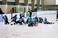 Solar Bears '04 vs Storm - Mt Dew Blast - 3rd Place Game - May 17, 2015